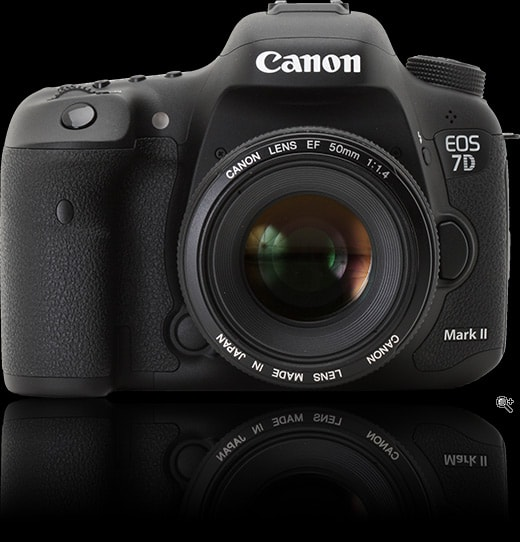 Back Button Focusing on the Nikon D7000 and Canon 7D | DPC