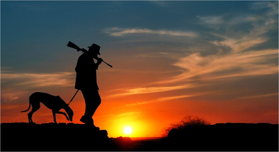 Man with Hunting Rifle walking with his Dog at Sunset