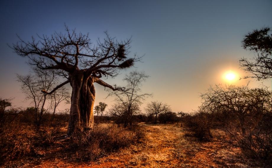 06 - Landscape Photography
