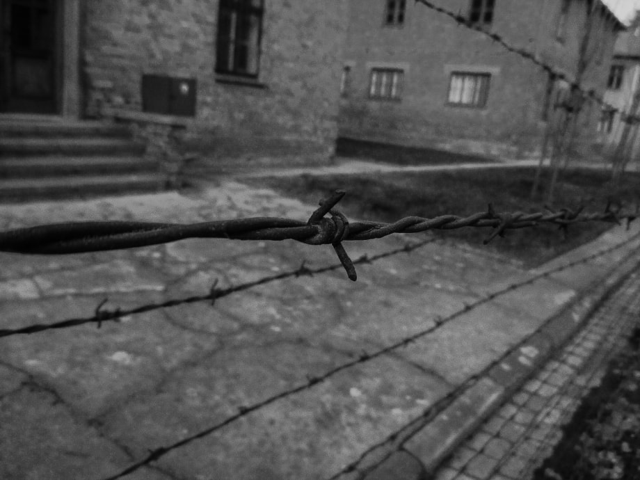 Barbed wire of death by Coenraad Albertyn