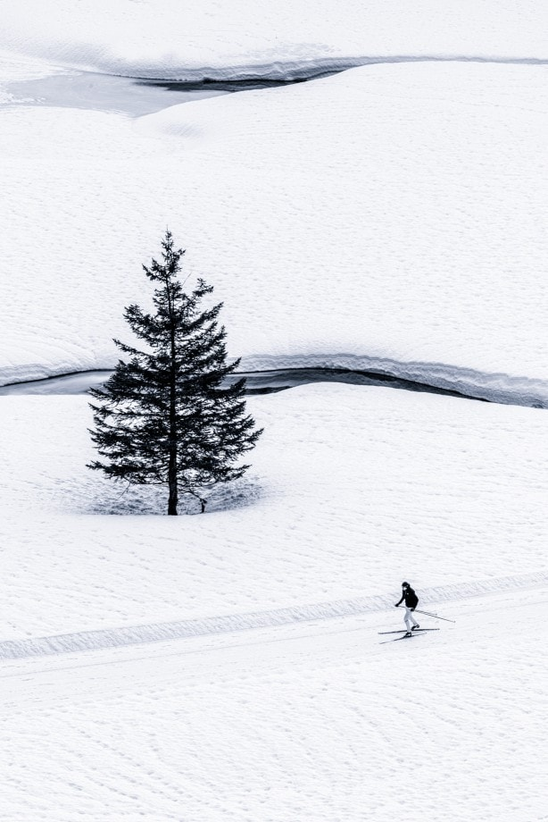 snowscape scene with a person on skis by nadia-de-lange