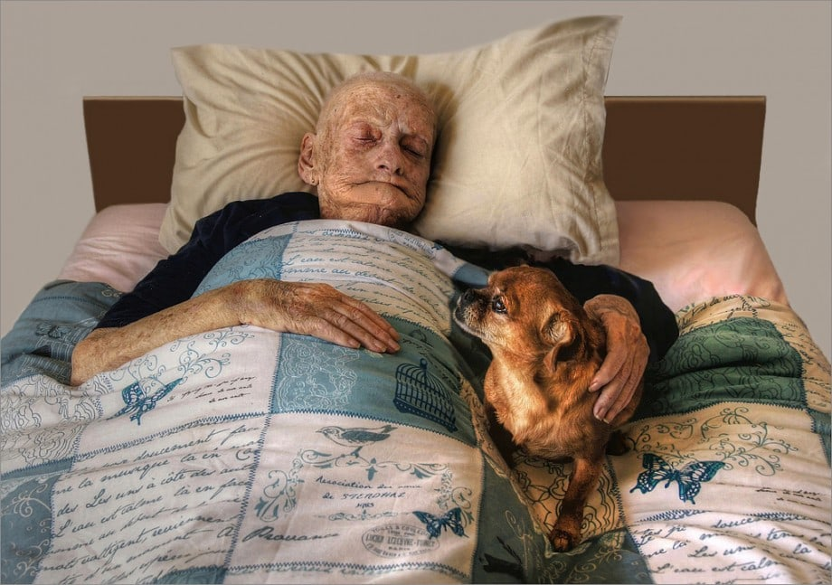 emotional photo of a dying old lady with her dog at her side