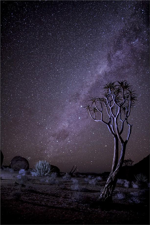 Cobus Eksteen Starry Sky