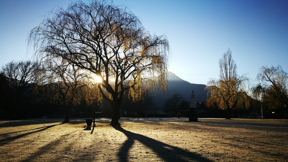 trees cast their morning shadows on a crisp winters sunrise in dullstroom, free state